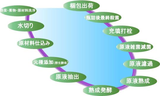 酵素の製造工程